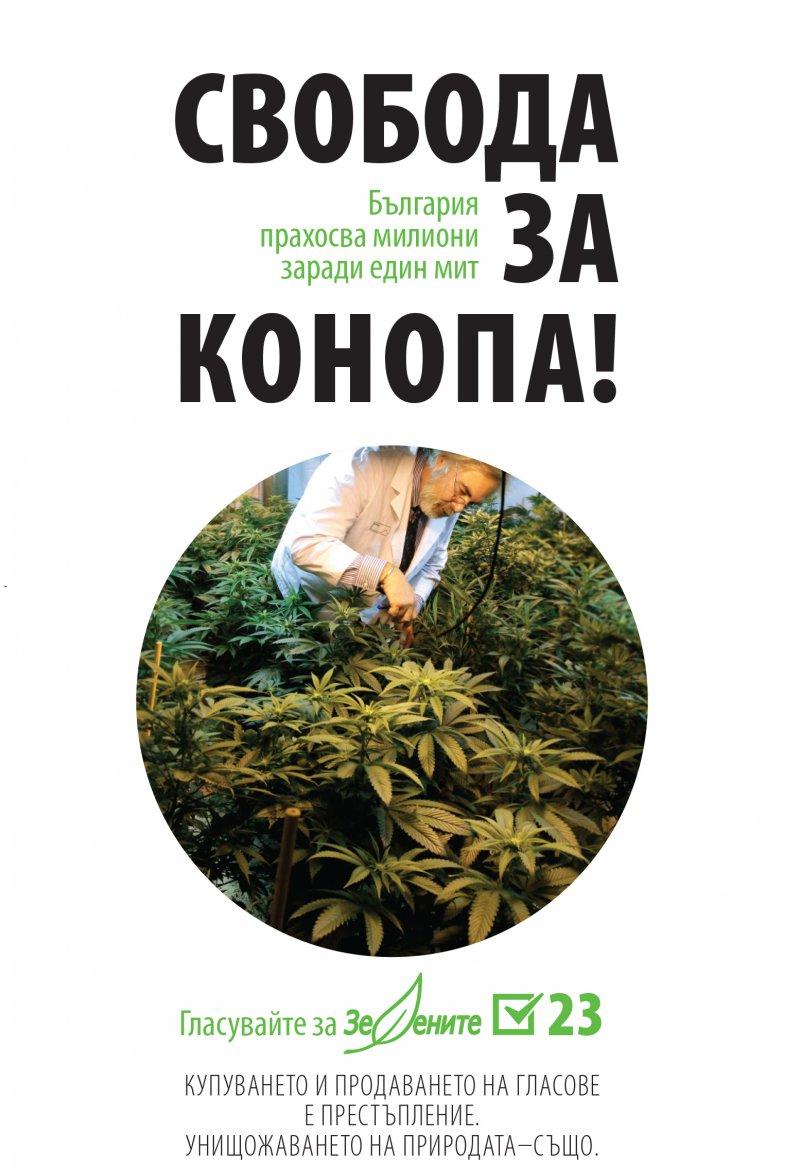 Новини :: Зелените зарибяват майки и деца с наркоманска ... - photo#39